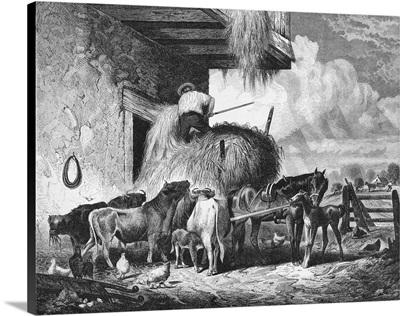 Farmer Feeding Livestock Hay, 1873