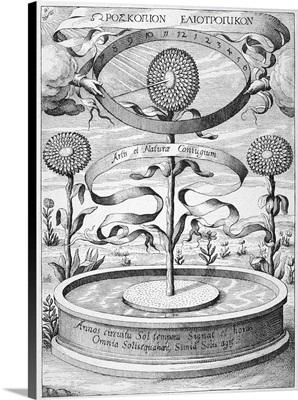 Flower Clock, 1643