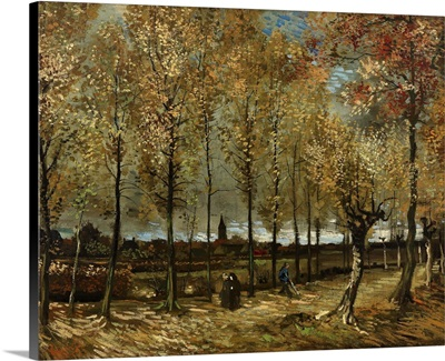 Lane With Poplars Near Nenen, 1885