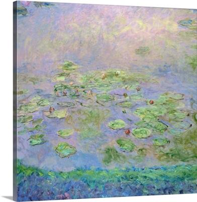Nympheas (Water Lilies), c1915