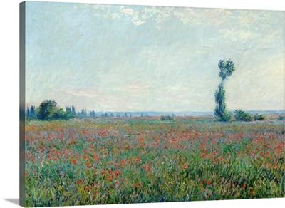 Poppy Field, 1881