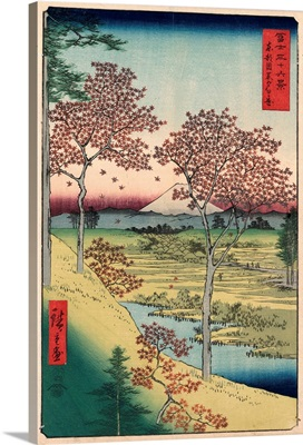 Red Maple Trees At Sunset Hill, Meguro, Tokyo, 1858