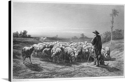 Shepherd, 19th Century