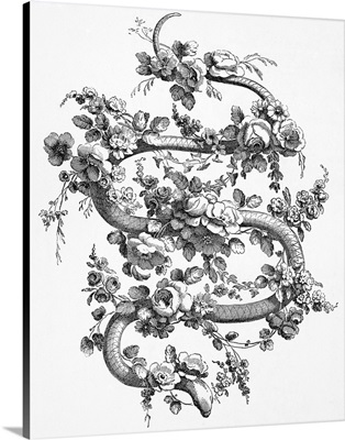 Snake And Roses, 1762
