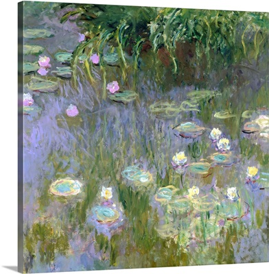 Water Lilies, c1915