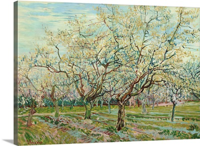 White Orchard, 1888