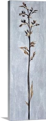 Cool Botanicals III