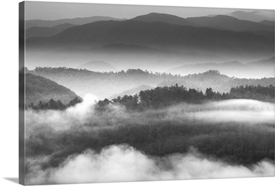 Morning Mist, Foothills Parkway