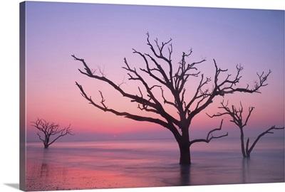 Sunrise On Botany Bay