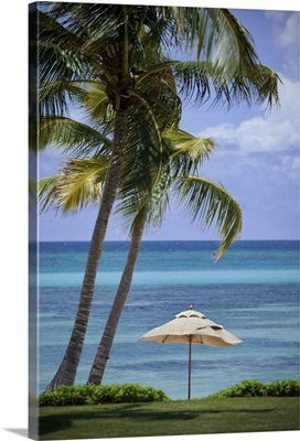 A lone umbrella provides refuge from the Caribbean sun