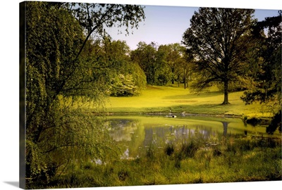 A peaceful rural scene with trees lake, green grass and blue sky