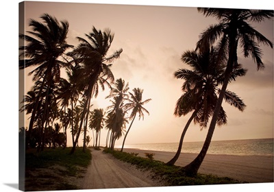 A setting sun provides a warm glow and a beautiful view of a beach road