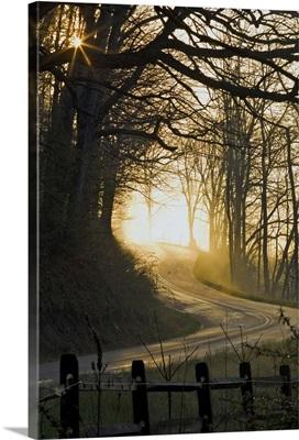 April morning along Iselboro Road in Hocking Hills, Ohio
