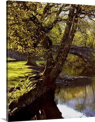 Cotswolds stone bridge