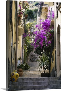 Decorations including vases and flowers line residential alleyway, Italy