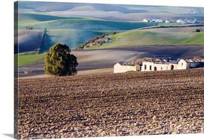 Farm fields, Spain