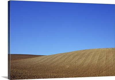 Field of cereal stubble on rolling hills under blue sky Lincolnshire Wolds, England