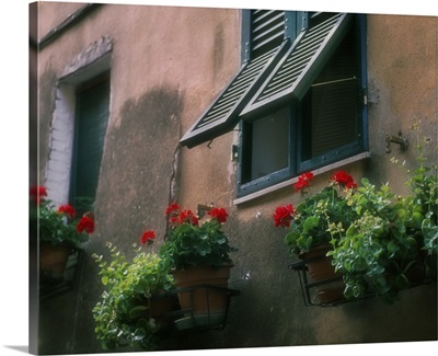 Flowers decorate the wall beneath an open window in Italy