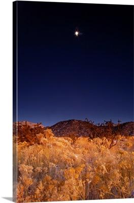 Sandia mountains desert twilight landscape moon rise, New Mexico