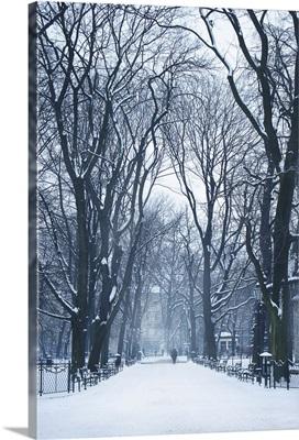 Snow in Krakow