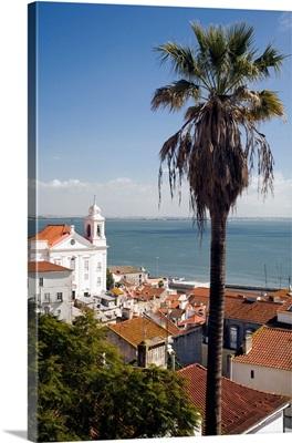 View of Lisbon from Santa Luzia viewpoint, Portugal, Santo Estevao church on the left