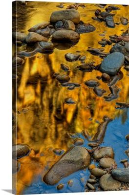 Virgin River Gold