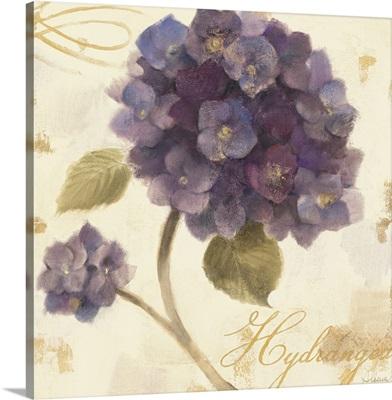 Abundant Hydrangea I
