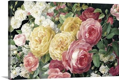 Antique Roses on Black Crop