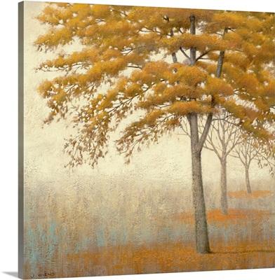Autum Trees I