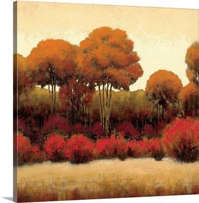 Autumn Forest II