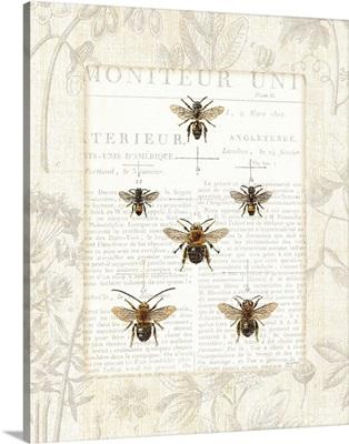 Bee Botanical