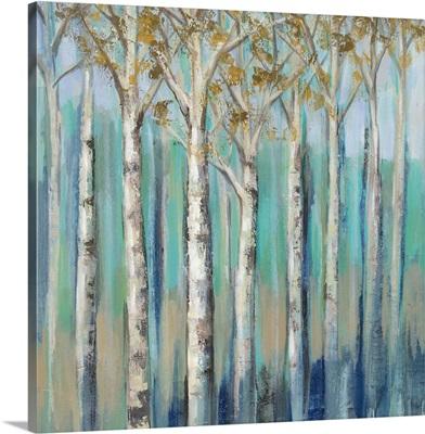 Birches at Dawn