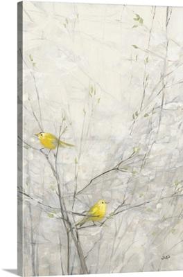 Birds In Trees II