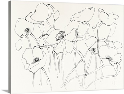 Black Line Poppies III