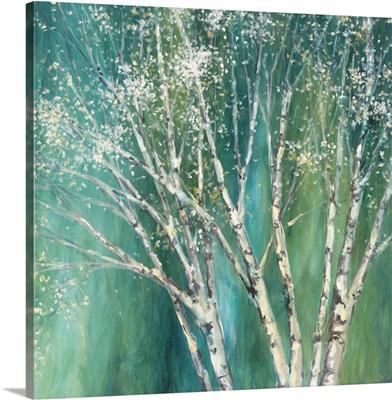 Blue Birch II
