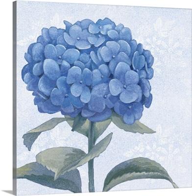 Blue Hydrangea III