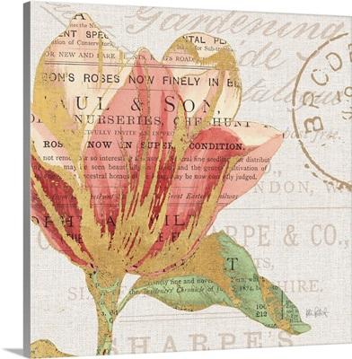 Bookshelf Botanical III