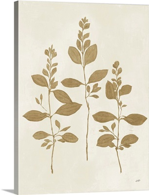 Botanical Study IV Gold