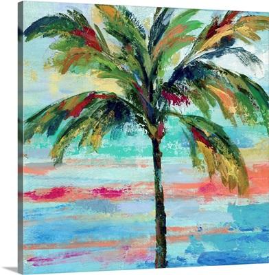California Palm II