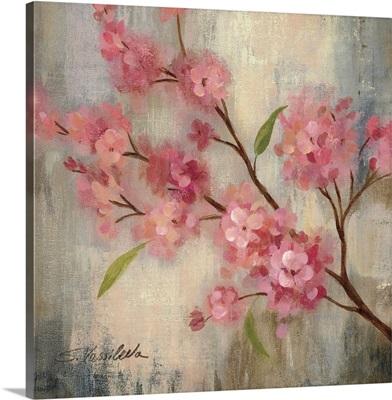 Cherry Blossom II