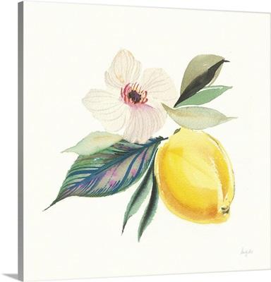 Citrus Summer III