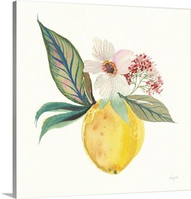 Citrus Summer IV