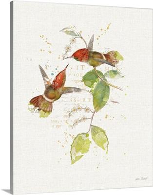 Colorful Hummingbirds II
