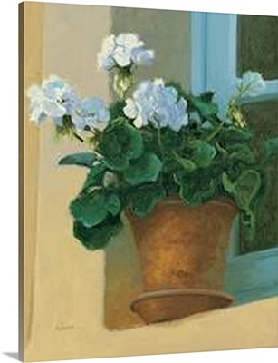 Creancey Geraniums I