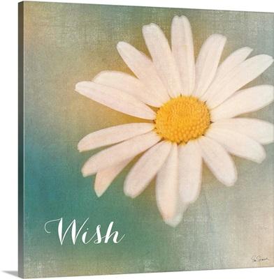 Daisy Wishes