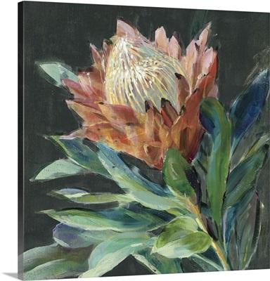 Deep Protea