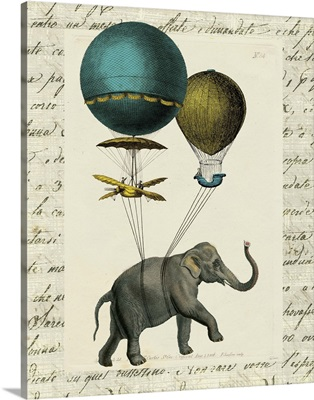 Elephant Ride I