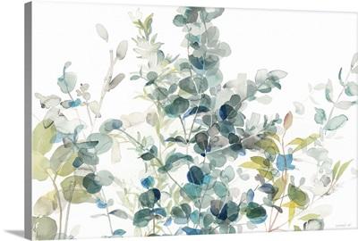 Eucalyptus I White Crop