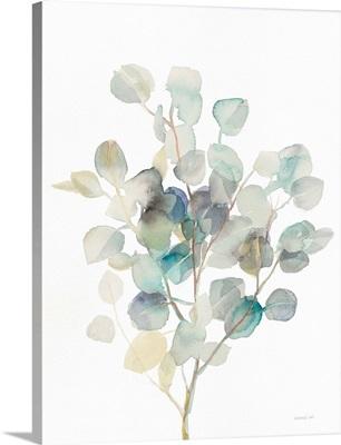 Eucalyptus III White