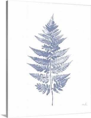 Fern Print I Blue No Shiplap